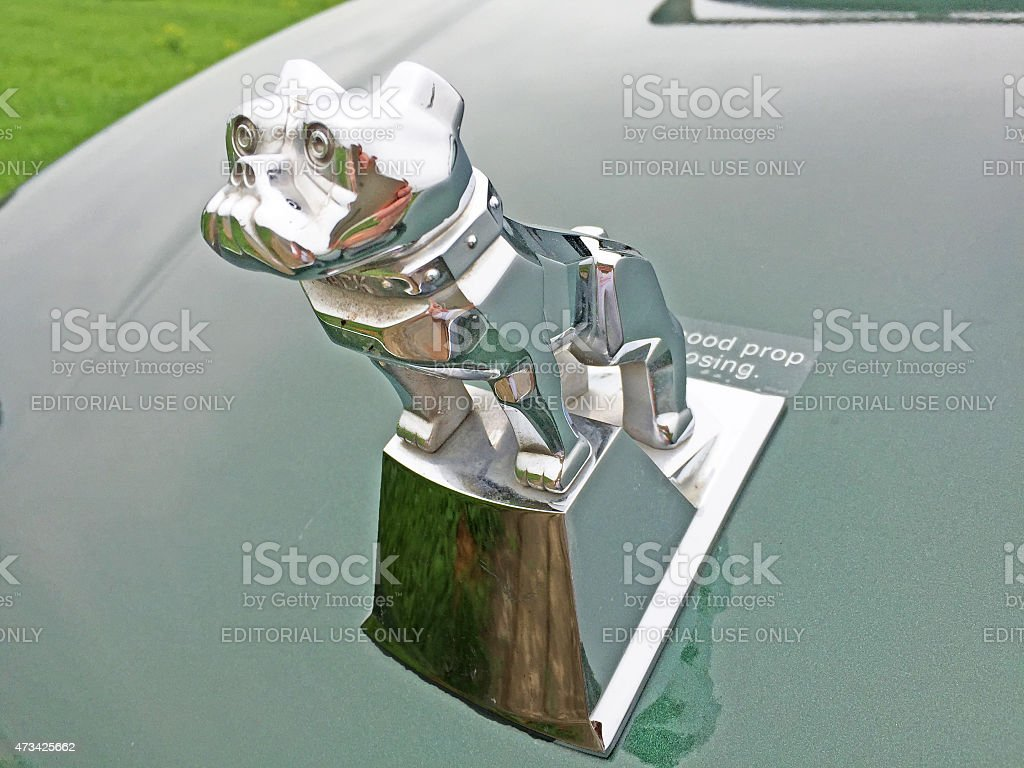 Mack Truck bulldog hood ornament stock photo