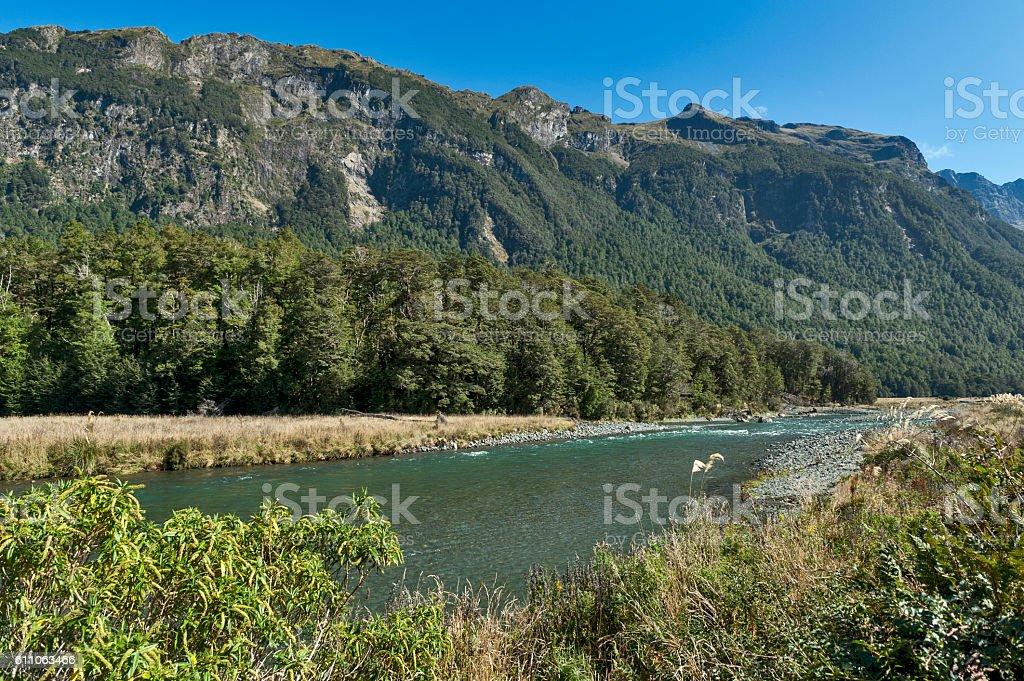 Mackay Creek, Fiordland National Park, New Zealand stock photo