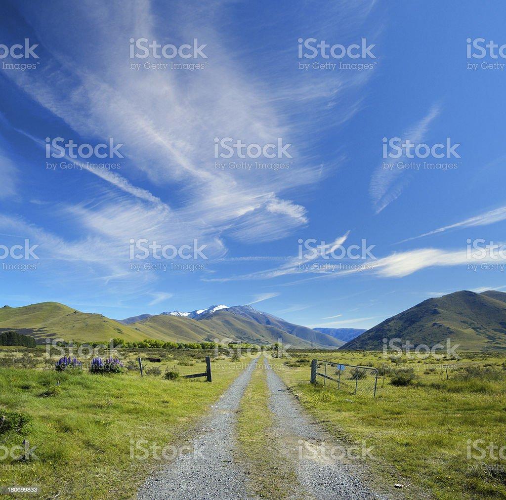 Mackenzie Country New Zealand royalty-free stock photo