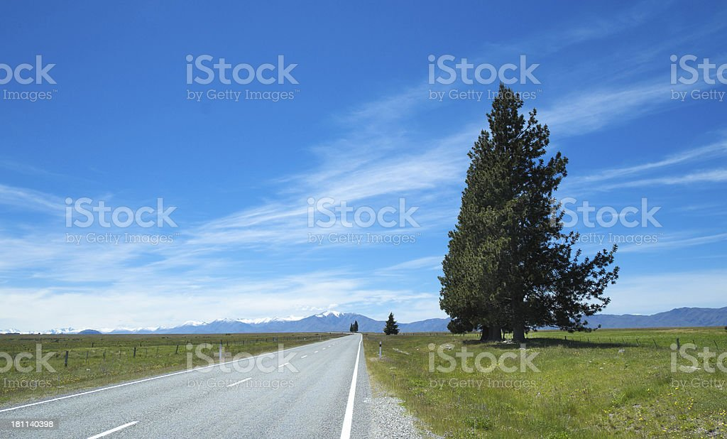 Mackenzie Country, New Zealand royalty-free stock photo