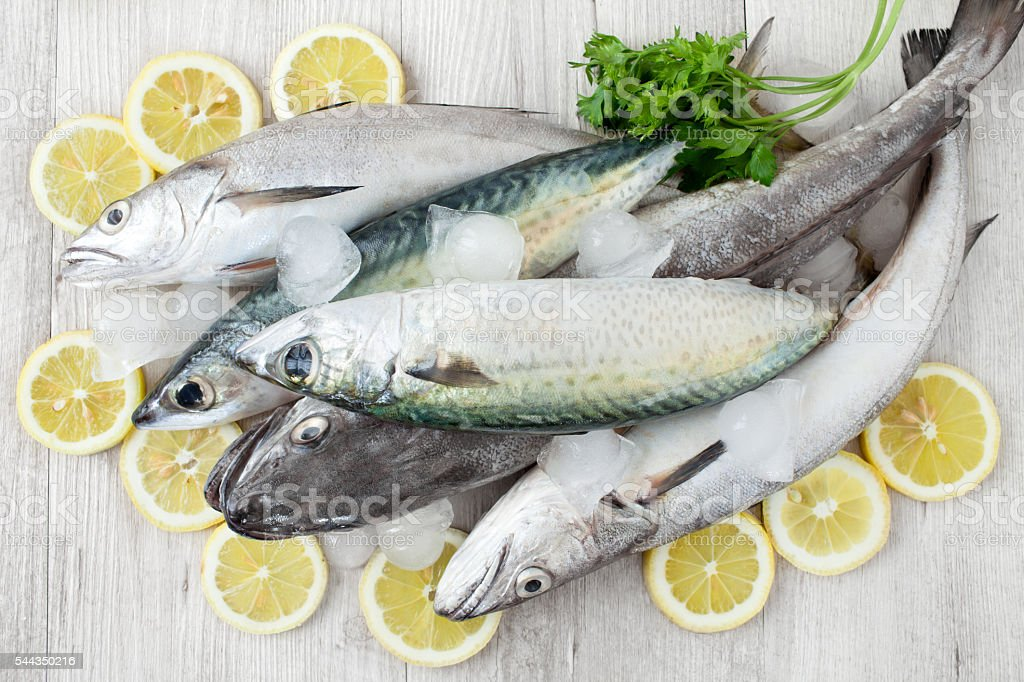 Mackerel And Codfish stock photo