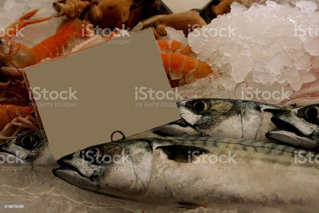 Mackerel and lobsters in crushed ice at fish market stock photo