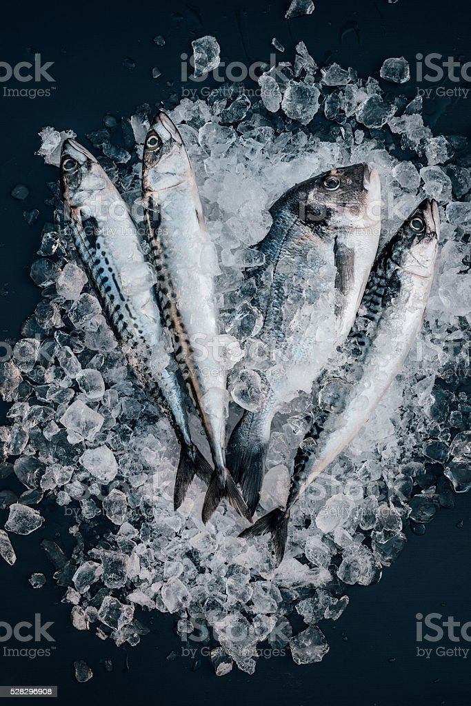 Mackerel and sea bream fish on ice seafood still life stock photo