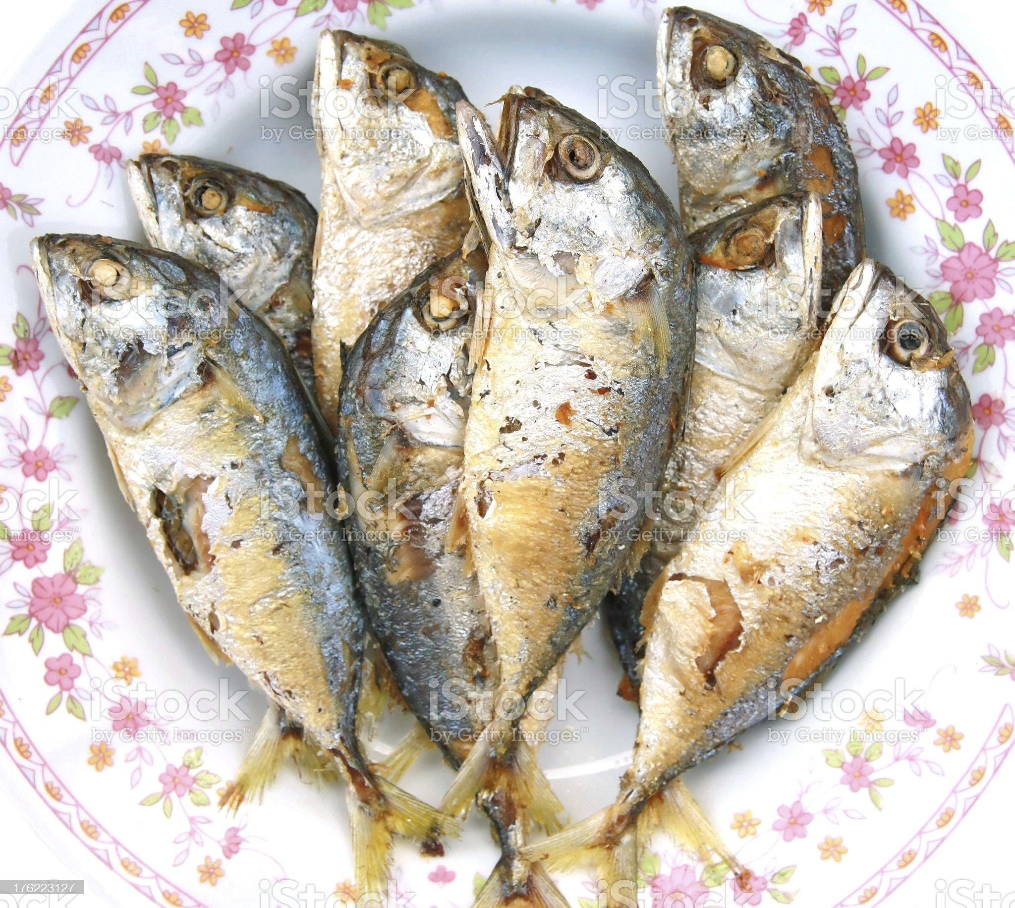 mackerel fried royalty-free stock photo