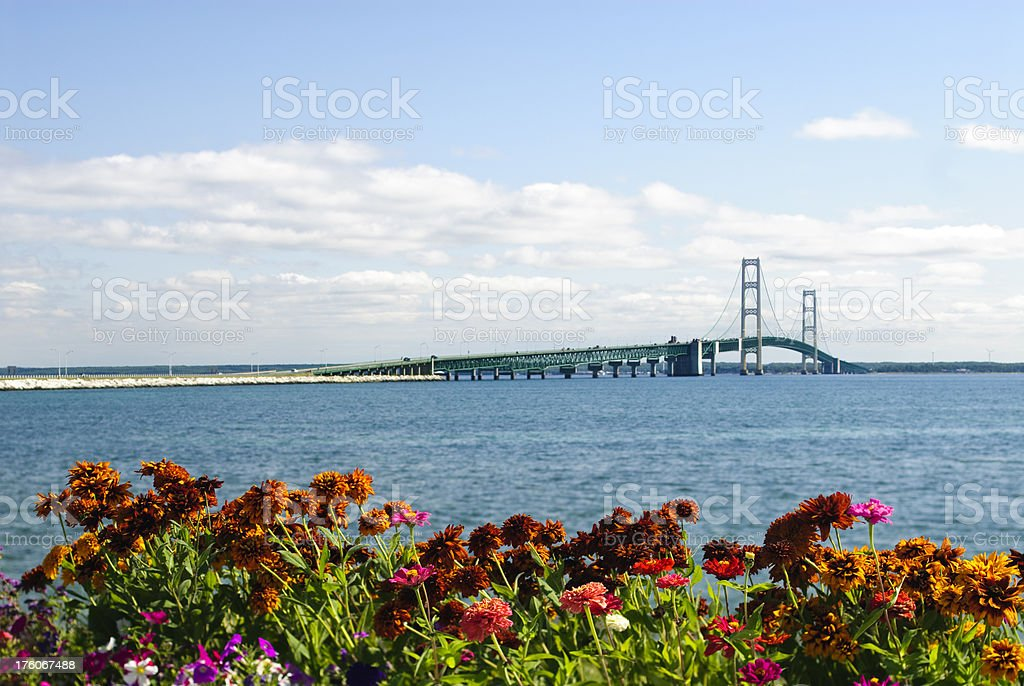 Mackinac Bridge and Flowers stock photo