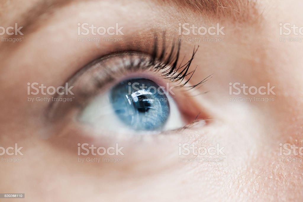 Macro blue eye stock photo