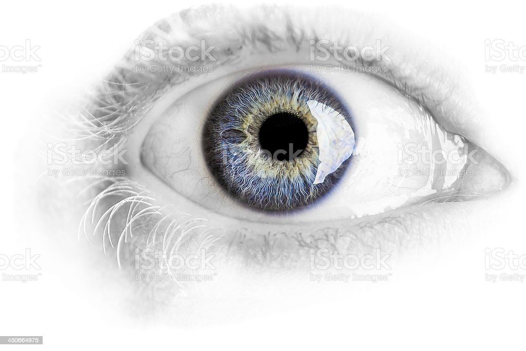 Macro blue eye with lots of details isolated on white stock photo