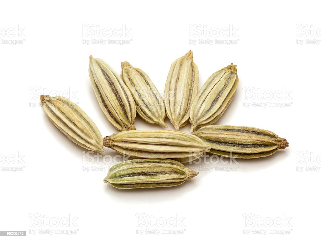 Macro closeup of Organic Fennel seeds. stock photo