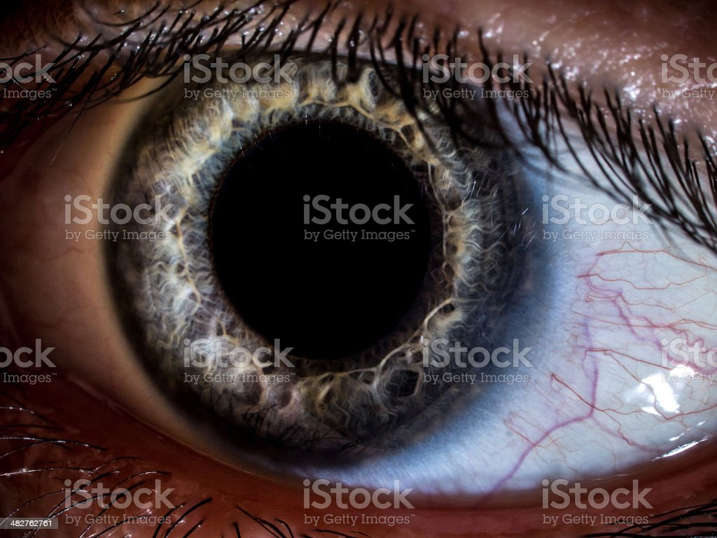 Macro close-up shot of human eye stock photo