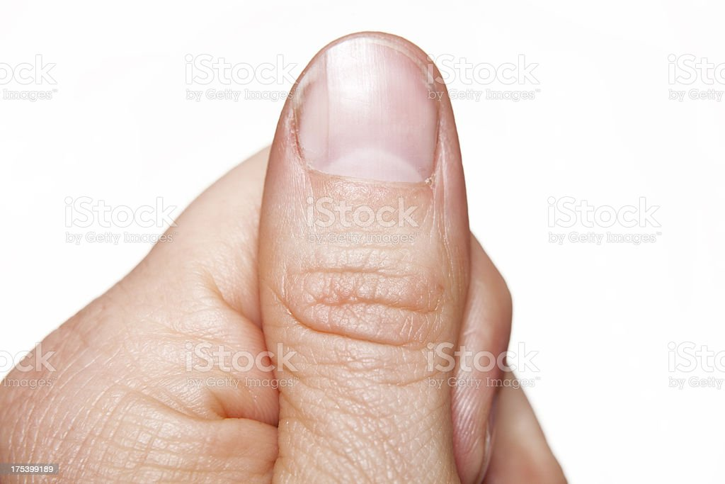 macro close-up thumb finger stock photo