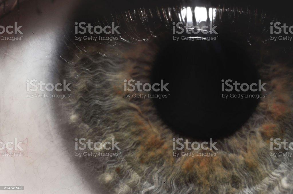 Macro eye with reflection stock photo