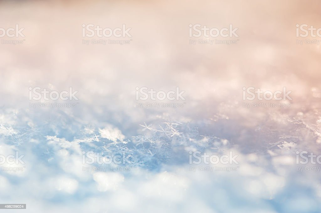 Macro image of snowflakes. Winter background. stock photo