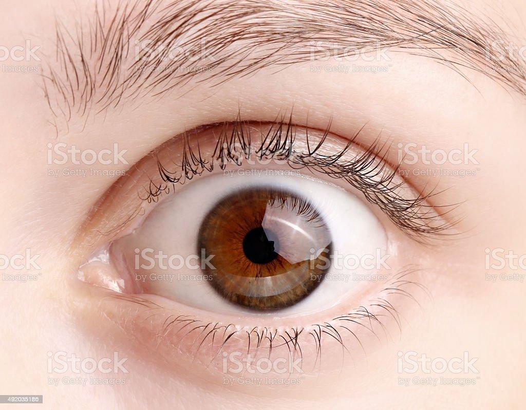 Macro image of wide open female brown eye stock photo