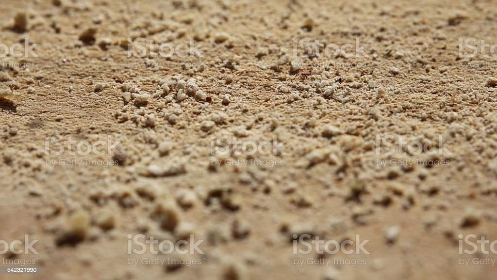 Macro of bread crumbs lying on a wooden slat stock photo