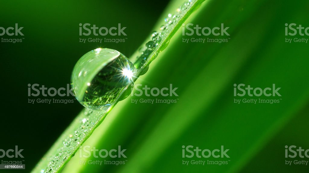 Macro of dropp. stock photo