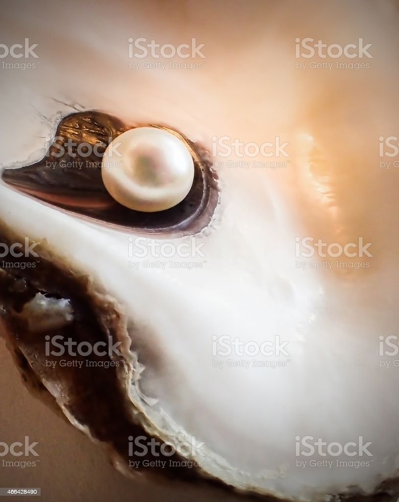 Macro of pearl in oyster shell stock photo