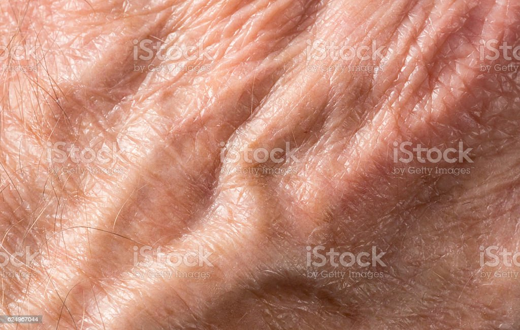 Macro photo of back of old mans hand stock photo
