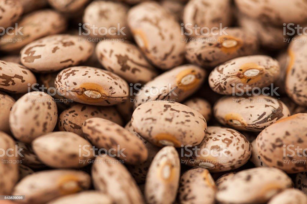 Macro photo of dried pinto beans stock photo
