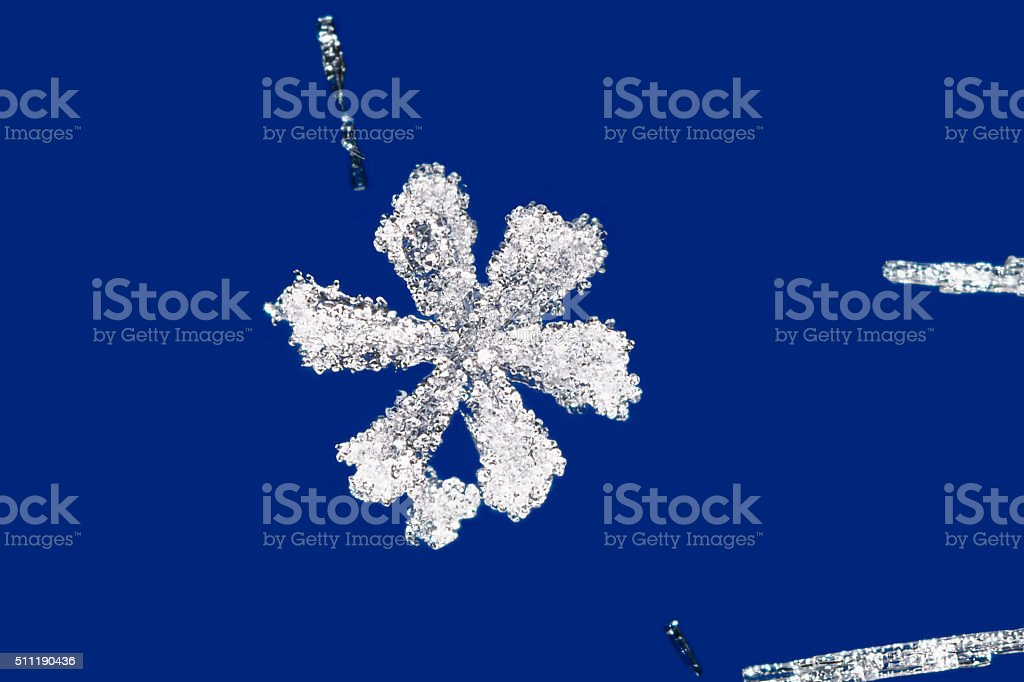 Macro photo of  rime snowflake on a blue background stock photo