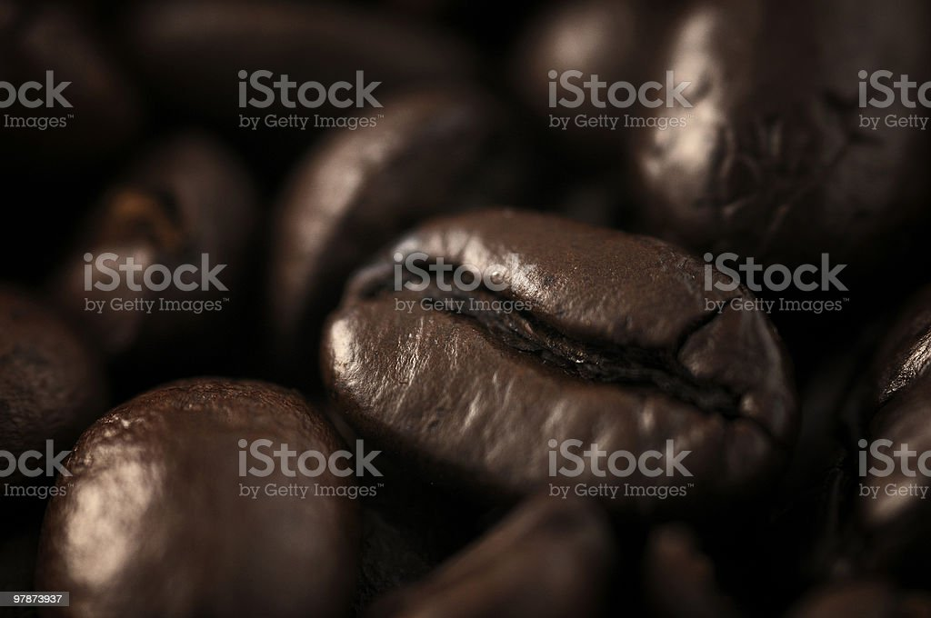 Macro photograph of a roasted coffee beans royalty-free stock photo