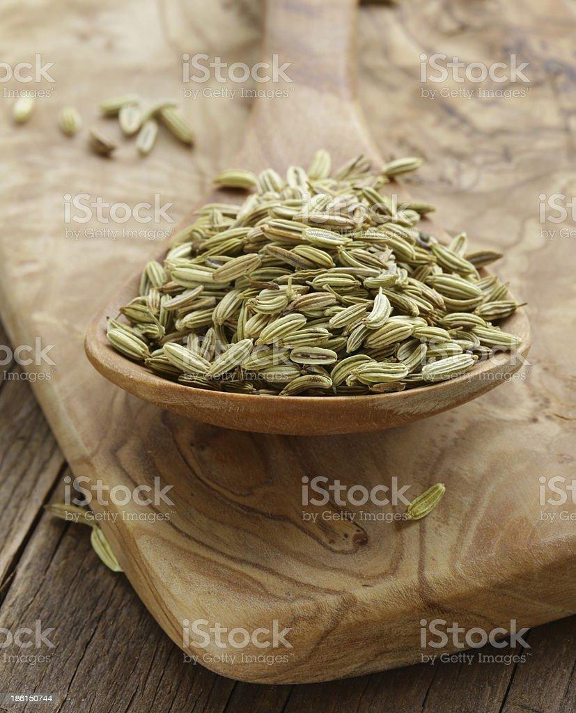 macro shot fennel seeds, aromatic spice seasoning royalty-free stock photo