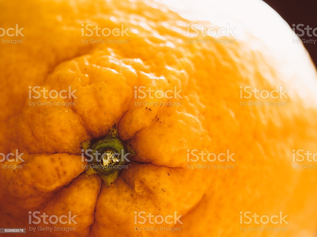 Macro Shot Of An Orange Fruit stock photo