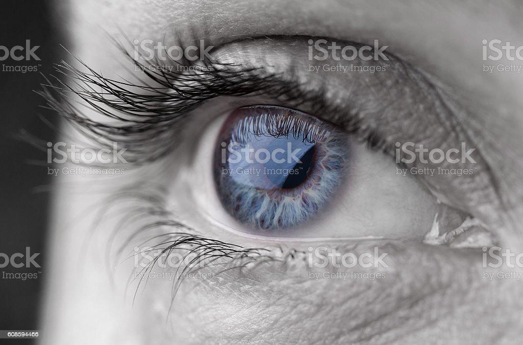 Macro shot of human beautiful grey eye.Toned image stock photo