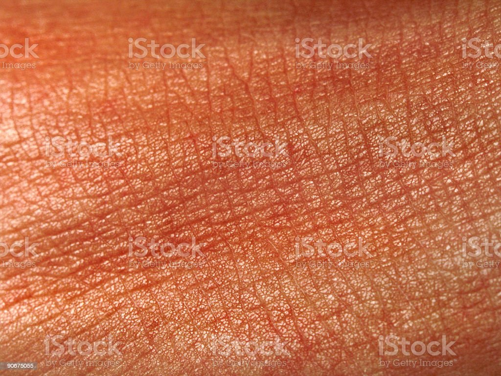 Macro skin royalty-free stock photo