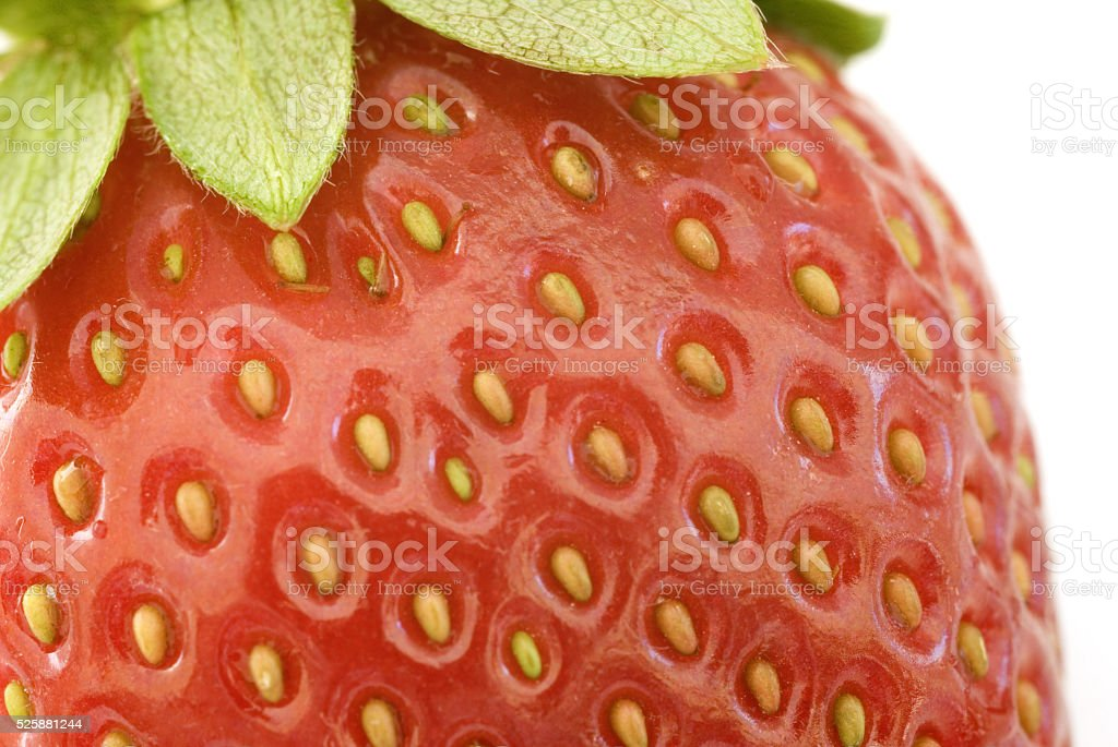 Macro view of a ripe red juicy strawberry stock photo