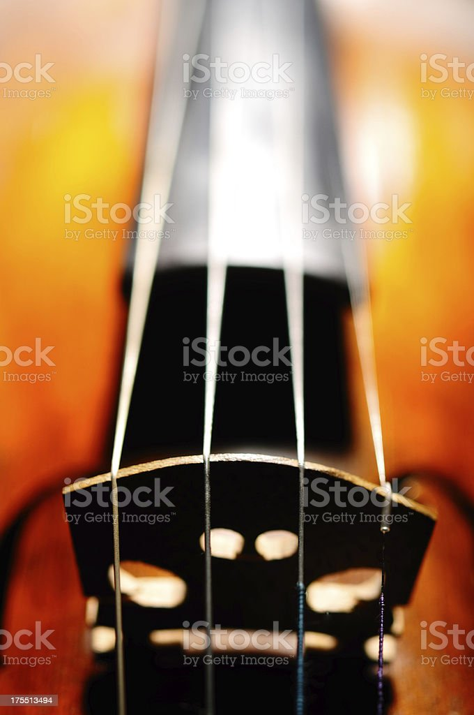 Macro Violin Photography royalty-free stock photo