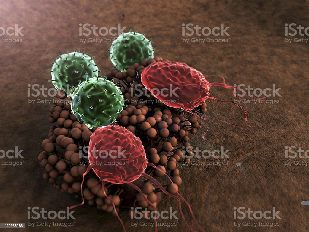macrophage, fungus stock photo