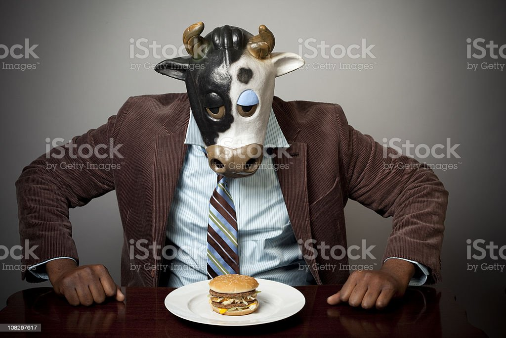 Mad Cow stock photo