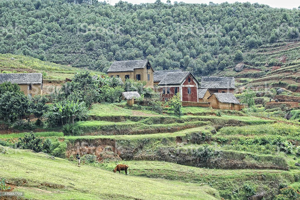 Madagascan Countryside stock photo