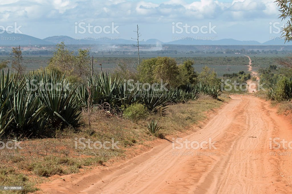Madagascar sisal crop plantations dirt road Ivakoany Massif mountains stock photo