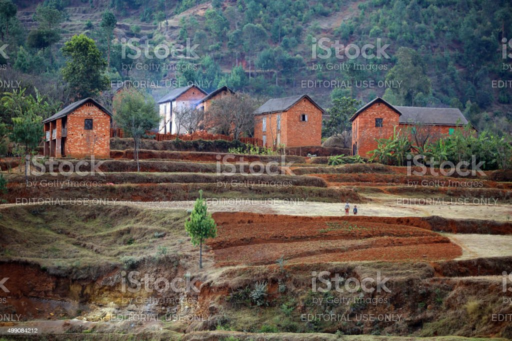 Madagascar: Terraced Farming Near Antsirabe stock photo