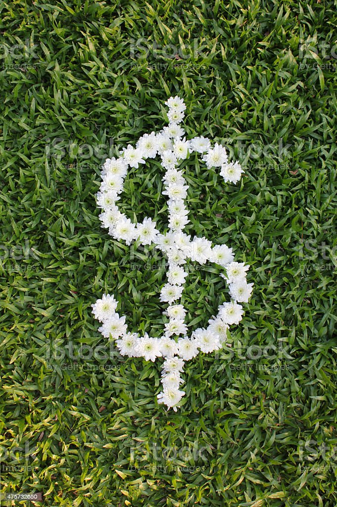 $ made from daisy flowers stock photo