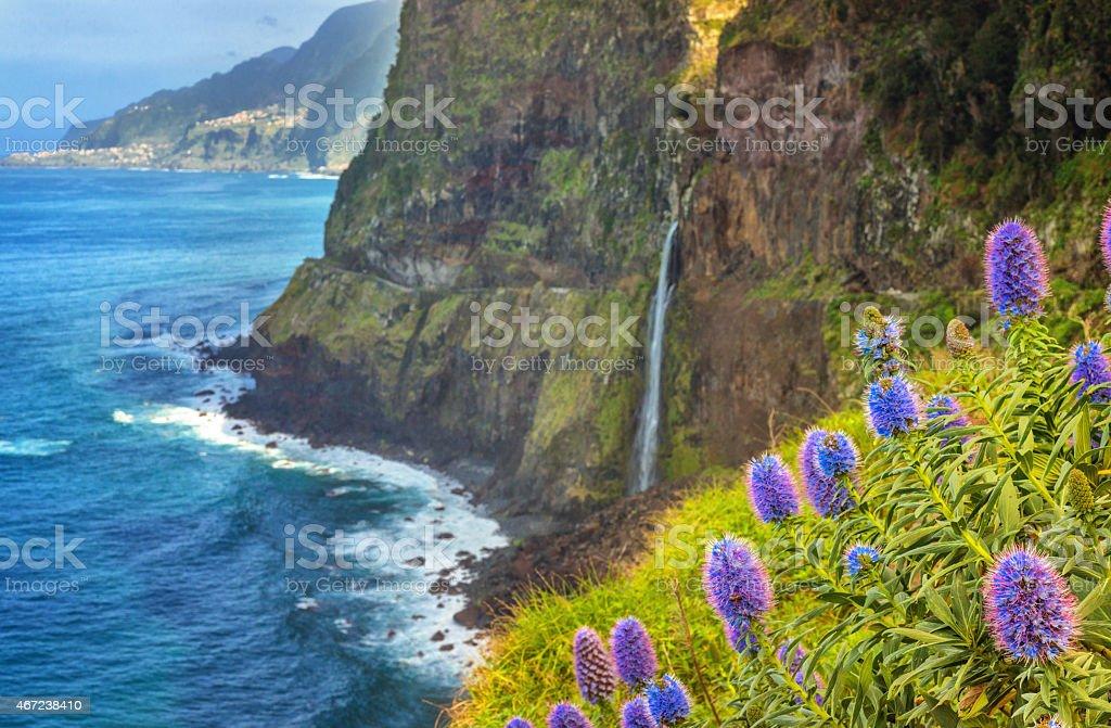 Madeira Waterfall  - Bridal Veil (Veu de Noiva) in Seixal stock photo