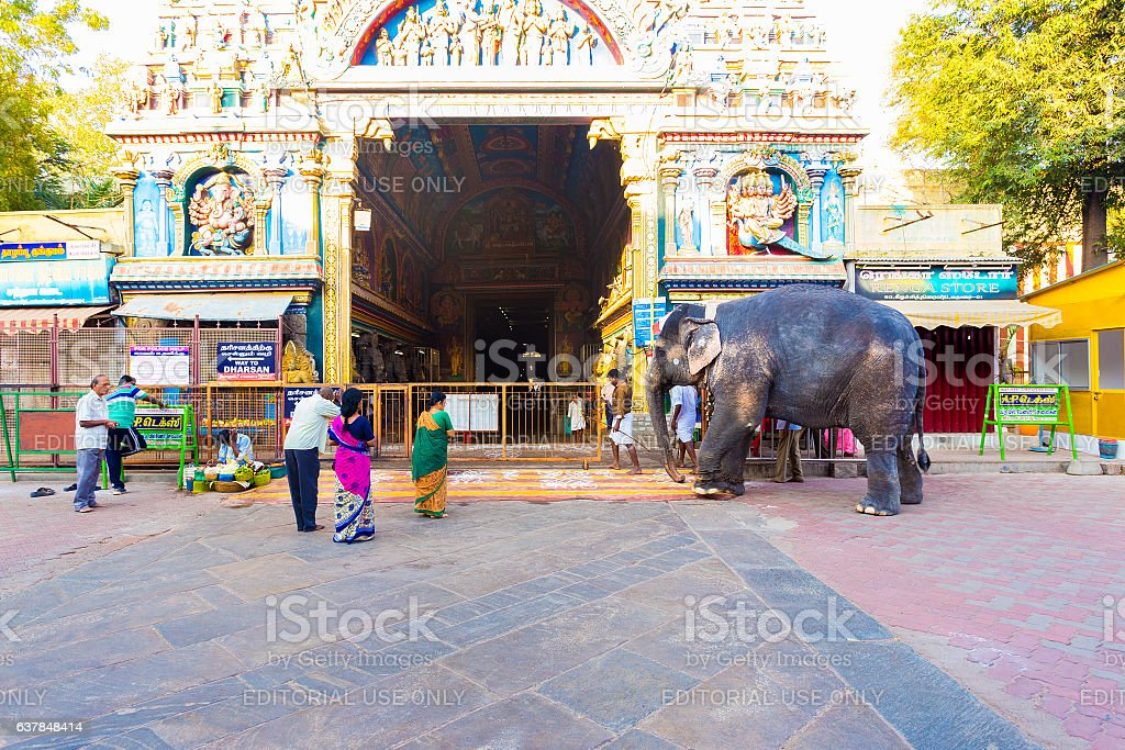 Madurai Meenakshi Amman Temple Gateway Elephant stock photo