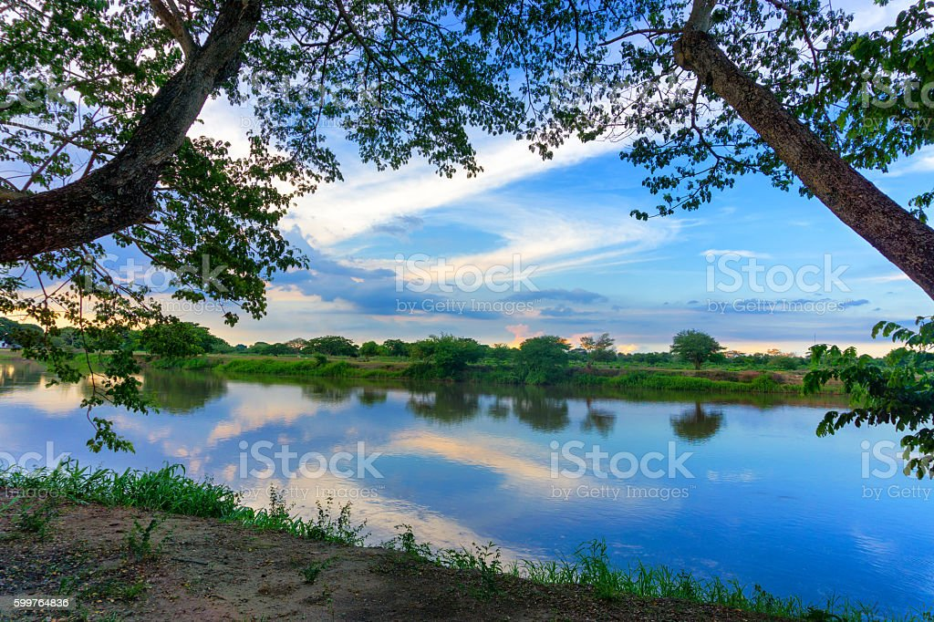 Magdalena River and Trees stock photo