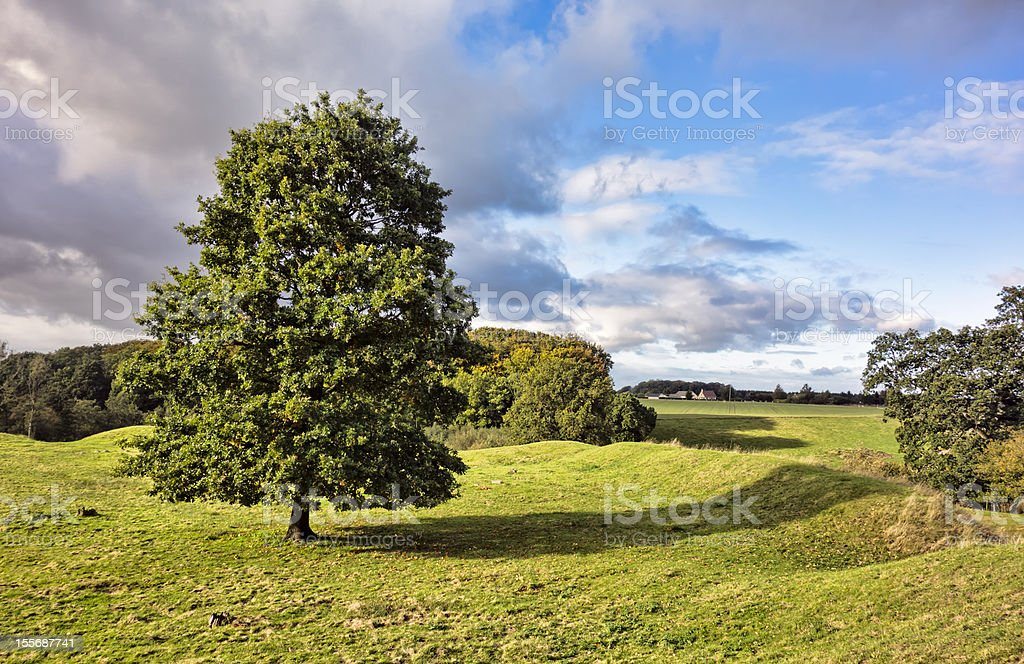 Magelund early medieval Mounds, Denmark royalty-free stock photo