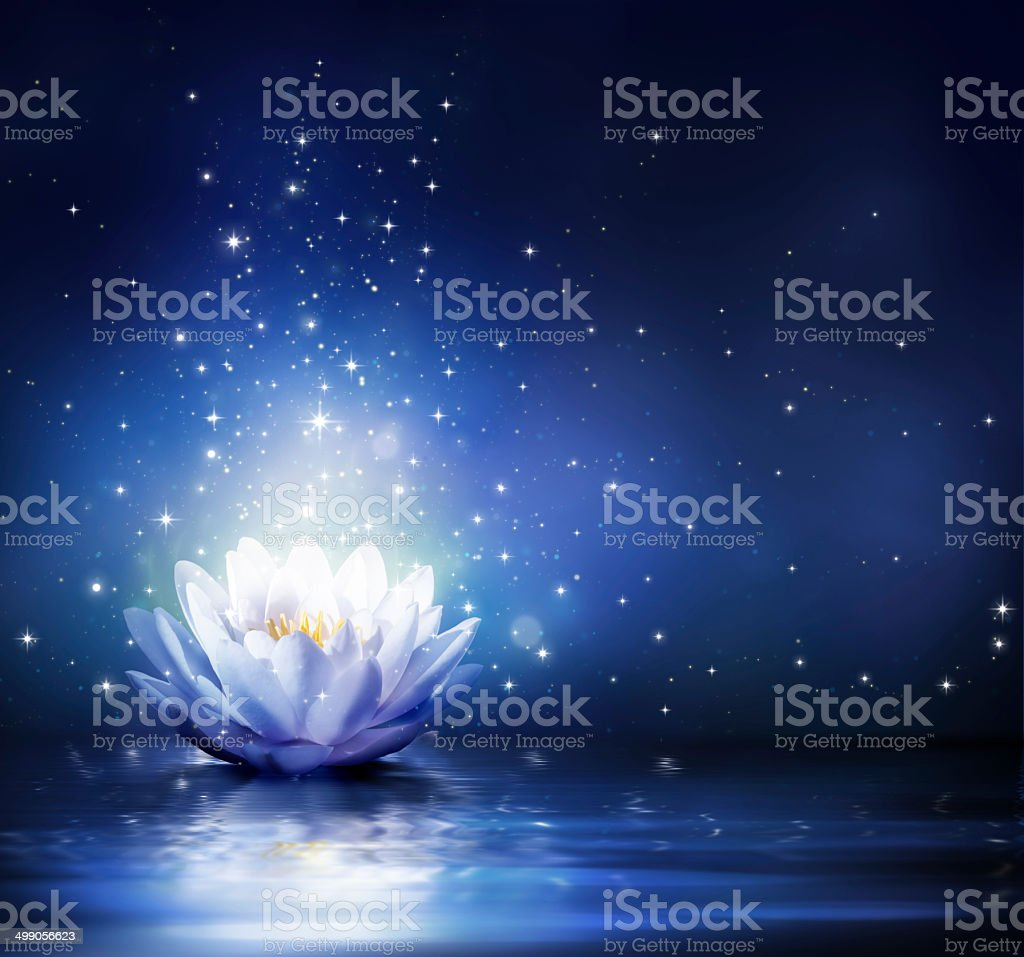magic flower on water - blue stock photo