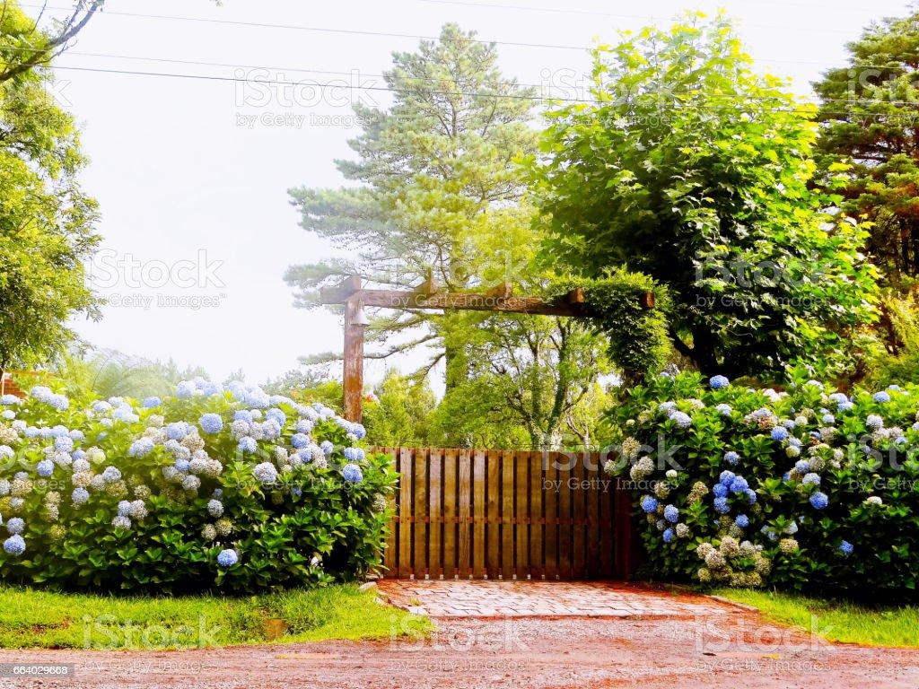 Portão mágico. stock photo