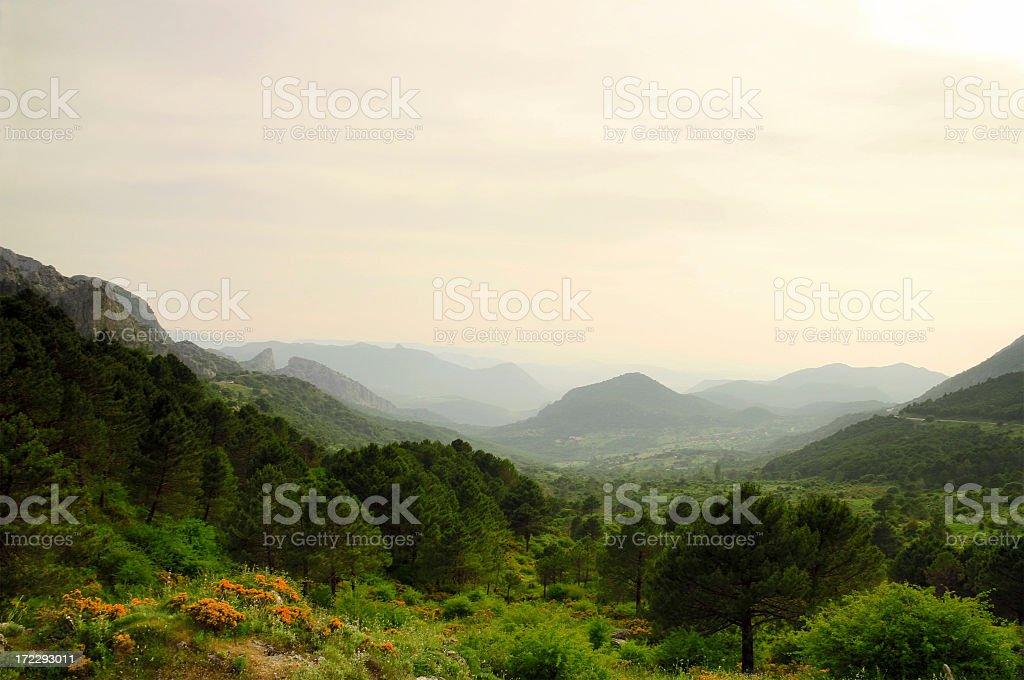 Magic Landscape stock photo