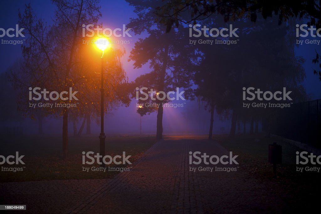 magic lights in the park stock photo