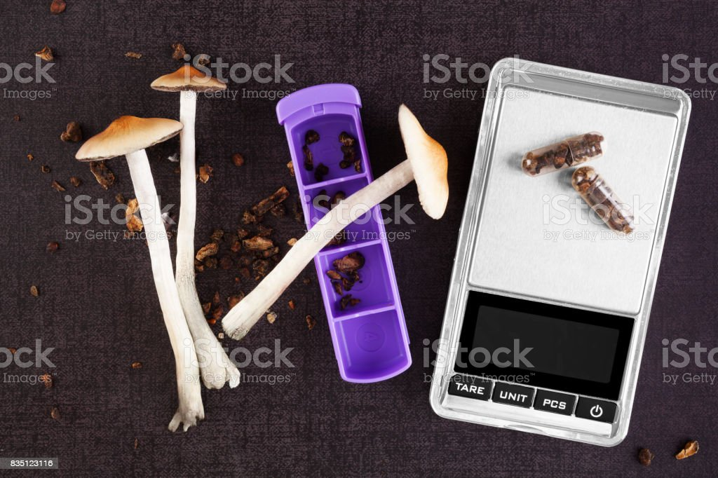 Magic mushroom medicine. stock photo
