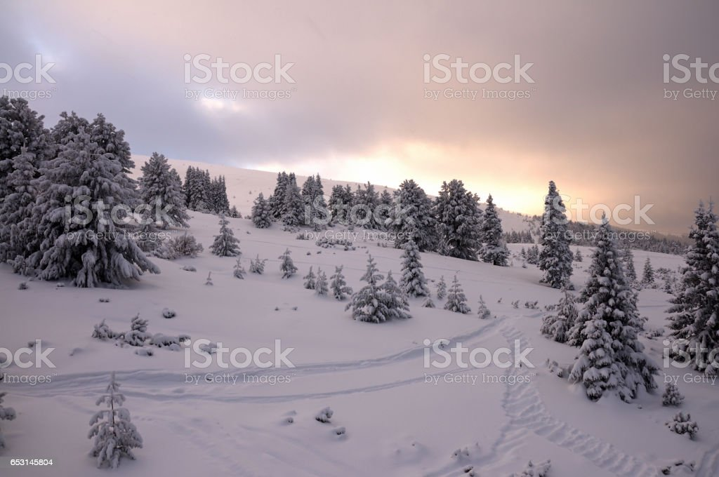 Magic view of Winter Park in stock photo