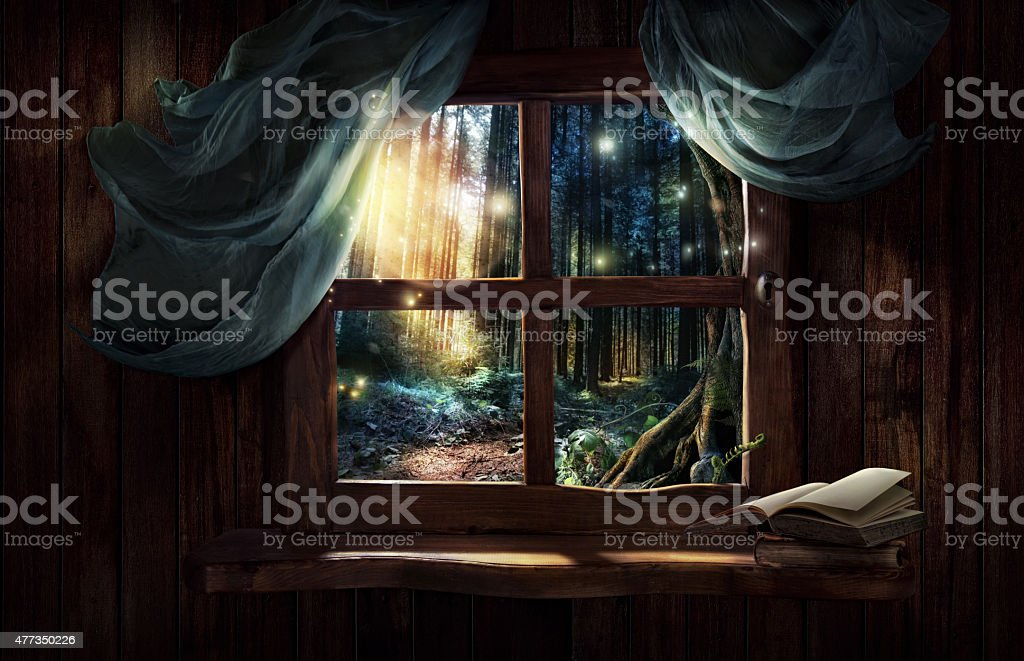 Magic window with fairy forest stock photo