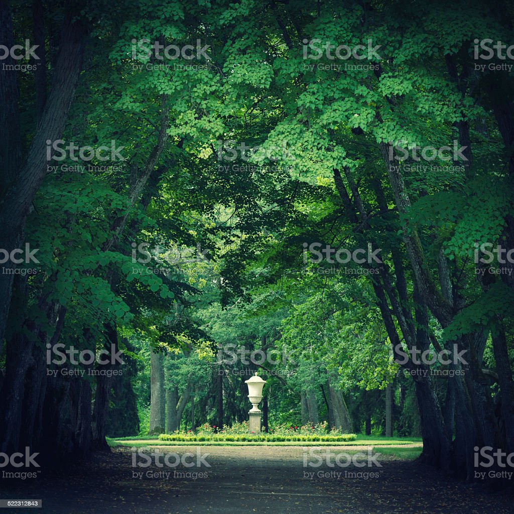 Magical park with green trees stock photo