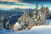 Magical snowy winter landscape,Poiana Brasov,Carpathians,Transylvania,Romania,Europe