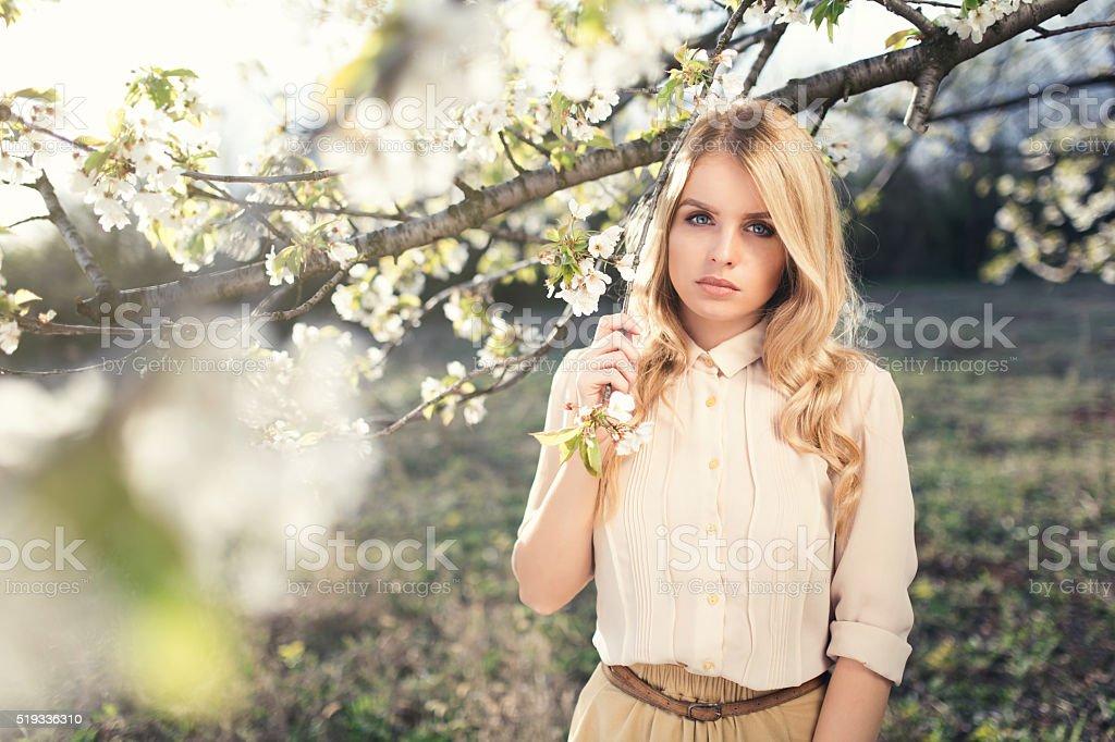Magical Spring stock photo